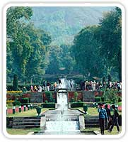 Garden with Fountains, Srinagar
