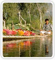 Man with Flower Boat, Srinagar