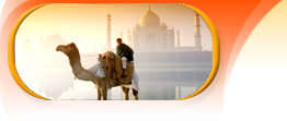 rajasthan with taj tour